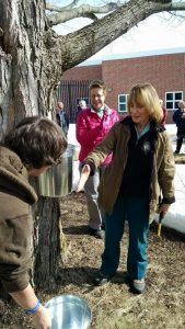 Governor Hassan kicks off the 2015 maple season tapping a tree at the Sununu center
