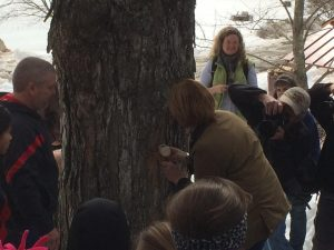Governors tree tapping event